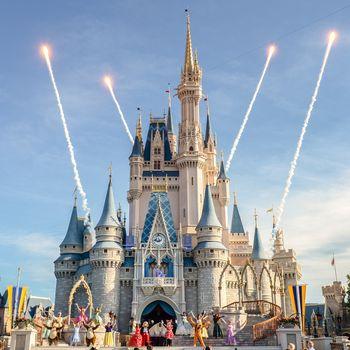 Trip to Disney Parks